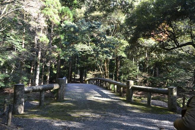 吾平山稜2.JPG