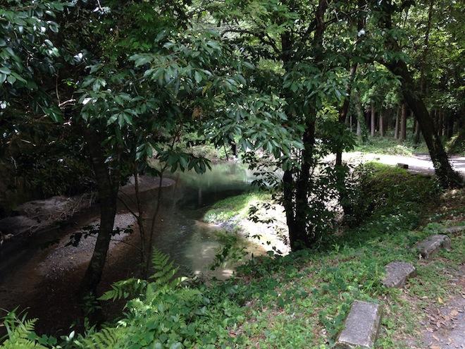 大出水の湧水3.JPG